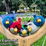 Angry birds Aktivite Oyunu